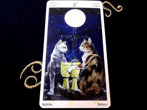 タロットカード:カップの2