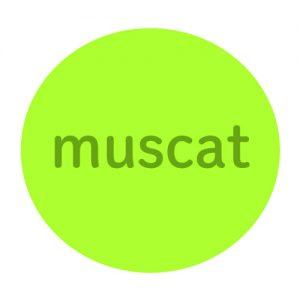 運命数22のサポートカラー:マスカット
