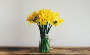 3月生まれのラッキーアイテム:黄色をインテリアにプラス